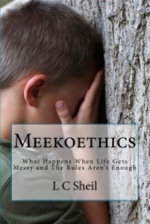 meekoethicscover